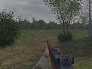 First person perspective from Call of Duty, aiming a gun through a vast meadow