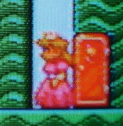 Super Mario Bros 2: Princess Toadstool standing in front of a red door in the side of a green hill.